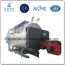Generador de vapor de gas de gran capacidad