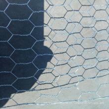 Malla de alambre hexagonal / del pollo del alambre del OEM / OEM del fabricante de China para el alambre del pollo de la malla del hexágono / del alambre de la jaula de pájaro / de las aves de corral