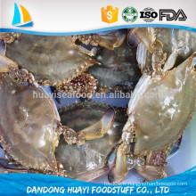 Vendeurs de crabe bleu entier frais congelés chinois