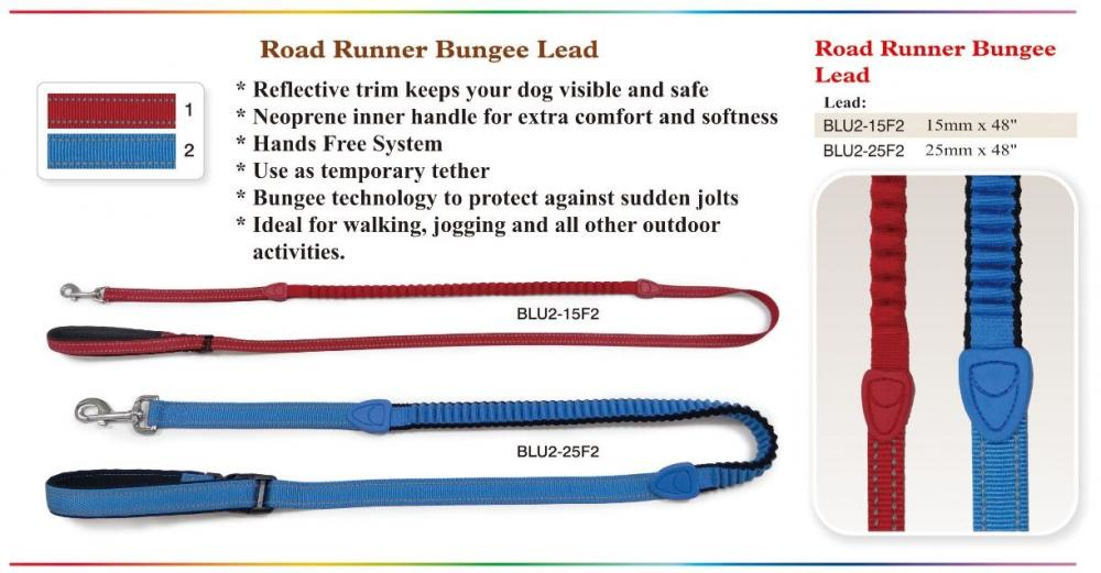 Road Runner Bungee Lead