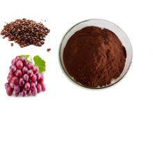 Suministro de extracto de fruta OPC orgánico Extracto de semilla de uva