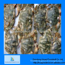 New frozen whole charybdis japonica