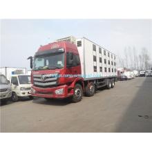Camião furgão refrigerado Foton 8x4