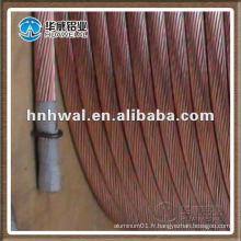 Usine de production d'énergie éolienne avec fil de cuivre nu
