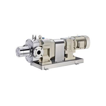 Lobe pump with safety valve
