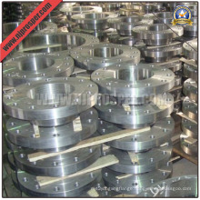 Stainless Steel Welding Neck Flanges (YZF-FZ165)