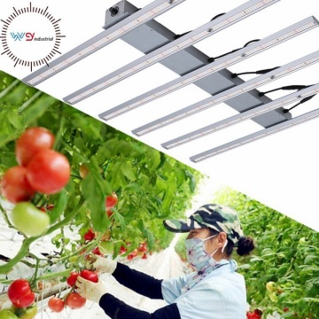 WENYI Greenhouse Grow Lamp No fan design Light