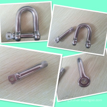 AISI 304 316 European Type Stainless Steel Dee Shackle