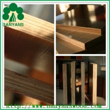 1220*2440mm/1250*2500mm Melamine Paper Faced Plywood with Competitive Price