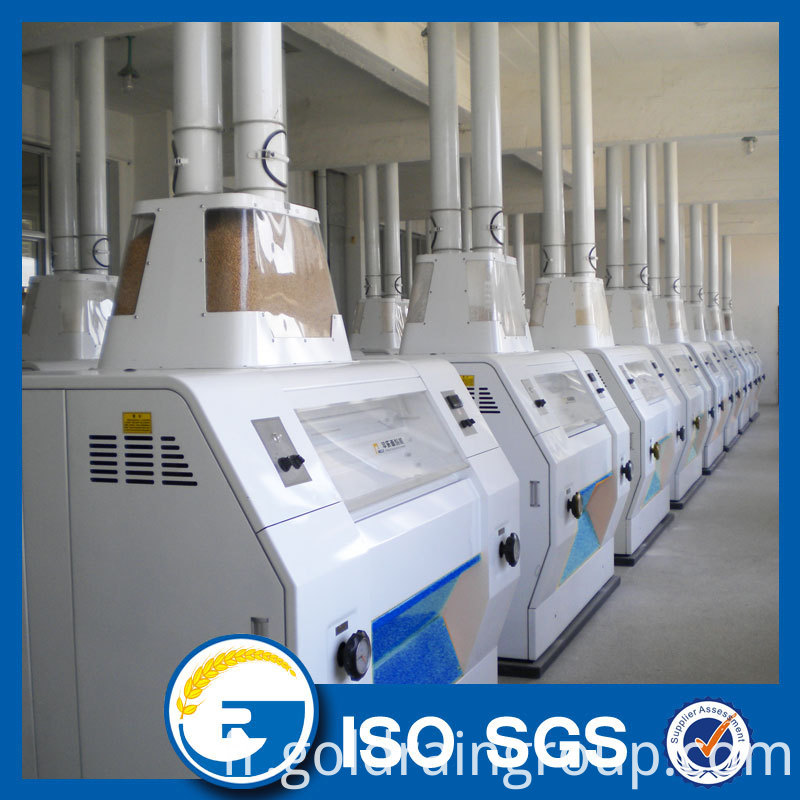 300 tons Wheat Flour Milling Plant