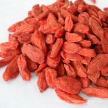 Bagas de Goji secas chinês, Wolfberry orgânico, alimentos saudáveis, frutas secas