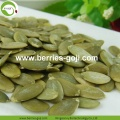 Factory Hot Sale Shine Skin Pumpkin Kernels