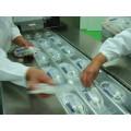 Máquina de embalagem a vácuo de alongamento contínuo totalmente automático Dlz-460