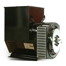 Бесщеточный синхронный генератор переменного тока мощностью 150кВА / 120кВт с CE, ISO (JDG274E)