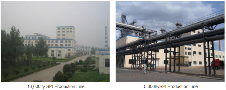 Soybean Protein Isolate Production Line