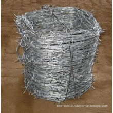 Hot Sale Hot-Dipped Galvanized Barbed Wire