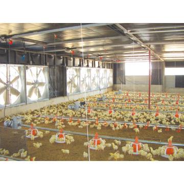 Автоматическое управление Тип птичника с оборудованием