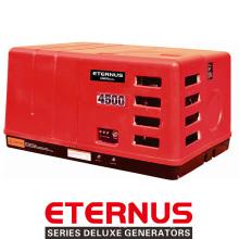 Generador de reserva de 3kVA AVR (BH3800EiS)