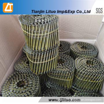 Approvisionnement Common Coil Clous Coil Framing Clous Usine