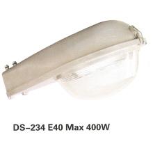 Luz de calle (DS-234)