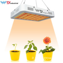 Scheda Quantum Grow Light 1000W