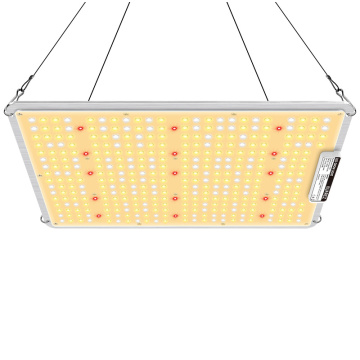 100W Square LED Grow Light