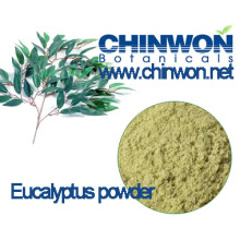 Pure and Natural Eucalyptus Leaves Powder for Herbal Sauna