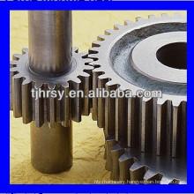 Spur gear shaft