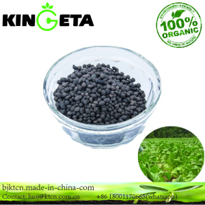 Agricultural Grade Best Quality Organic Fertilizer