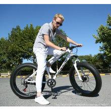 Fat Bike/Fat Beach Bike/Fat Sand Bike/Fat a/T Bike/Fat Snow Bike