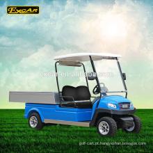 Motor de CA 2 seater carro de golfe elétrico carrinho de veículo elétrico utilitário carro de golfe