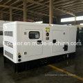 Silent Diesel Generator Работает от Cummins Engine (25kVA-250kVA)