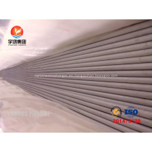Intercambiador de calor recta tubo A213 TP316Ti