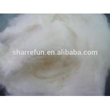 Nouvelle saison laine de mouton chinois brut