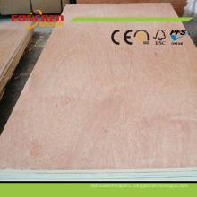 High Quality HPL Fire Retardant Plywood