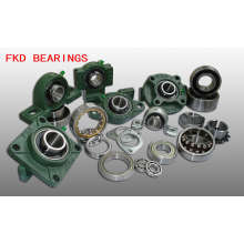 Fkd/Hhb Pillow Block Bearing/Insert Bearing (Uc204)