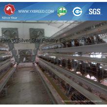 Südamerikanisches automatisches Huhn-Geflügel-Ausrüstung für Schichten und Broiler