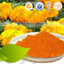 Natural Pigment Food Coloring Plant Extract Lutein Powder