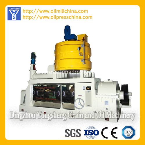 Screw Oil Press Machinery