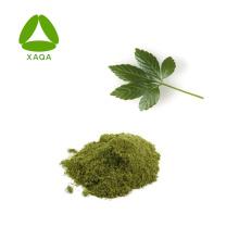 Herbal Powder Gynostemma Extract Gypenoside 98% Free Sample