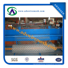 Galvanized Chain Link Fence (ISO9001; Manufacturer)