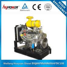 Weifang Ricardo R6105IZLD Moteur diesel