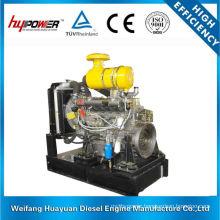 Weifang Ricardo R6105IZLD Diesel Engine