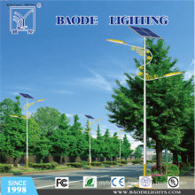 6m 30W Competitive Price for Sale Solar Street Light (bdtyn-a1)