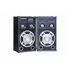 Горячий продавая 2.0 профессиональный активный диктор 6021