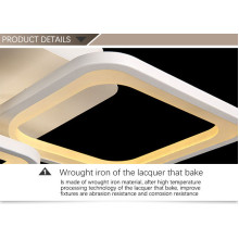 Attractive Gorgeous Noble Acrylic Ceiling Lamp in The Cafe