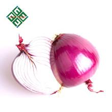 fresh sweet onion price