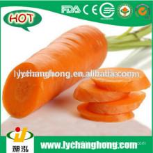2014 wholesale high quality fresh carrot S, M, L, 2L, 3L