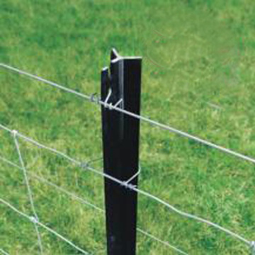 Y Sharp Post Used Wire Barbed