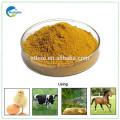 Ранг питания глютен кукурузный цена шрот для кормления животных
